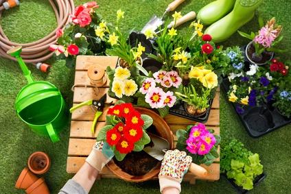 Die Zeit für Gartenarbeit beginnt jetzt! ©Alexander Raths_fotolia.com